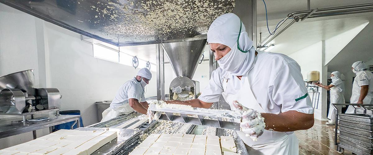 cheese_production